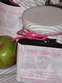 Scrapiana chutney jars and patchwork fabric scraps 025